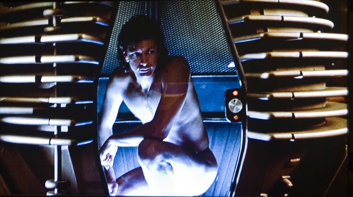 "Jeff Goldblum i Cronenberg-versionen av ""The Fly"""