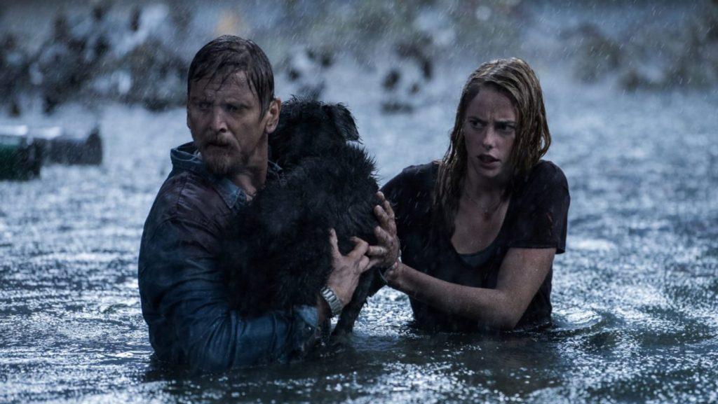 Crawl förtjänar en plats bland Netflix bästa skräckfilmer